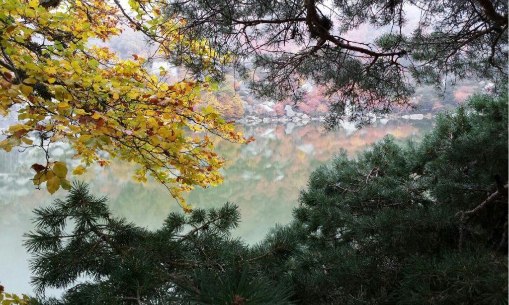 Laguna negra soria otoño