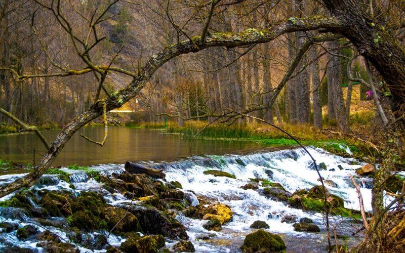 Setas, trufas, paisajes de cuento… ¡¡Ven a Soria en OTOÑO!!